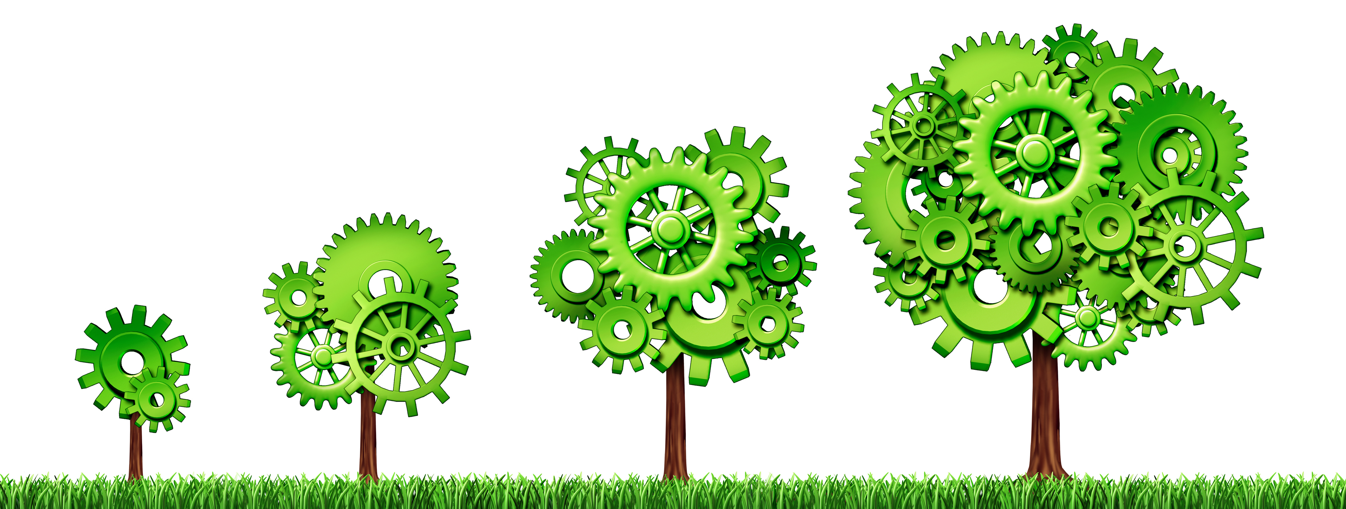 Simple Steps on How to Make Your Small Business Green
