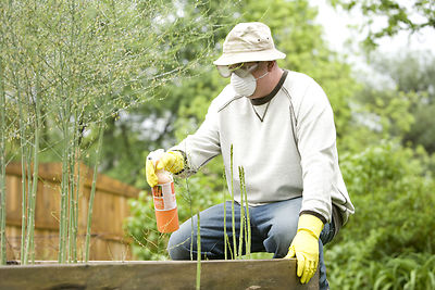 What is Green Pest Control?